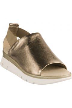 Sandales Miglio Nu pieds femme - - Dore - 36(101577572)