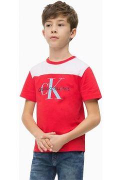 T-shirt enfant Calvin Klein Jeans IB0IB00151 COLORBLOCK MONOGRAM(101838612)