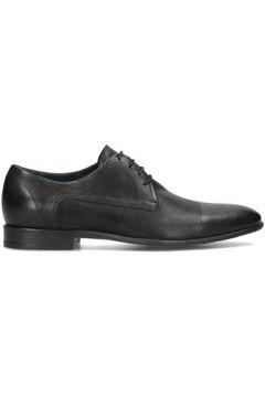 Chaussures Gino Rossi Chiasso(115603601)