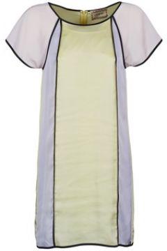 Robe Chipie FREGENAL(98742144)