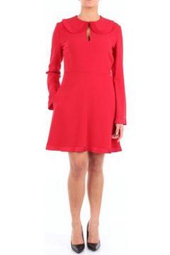 Robe Stella Mc Cartney 526065SCA06(115529286)
