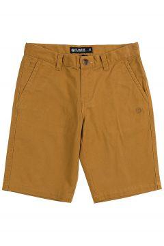 Element Howland Classic Shorts bruin(85188185)
