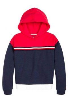 Sweat-shirt enfant Tommy Hilfiger COLORBLOCK HOODIE(101663779)