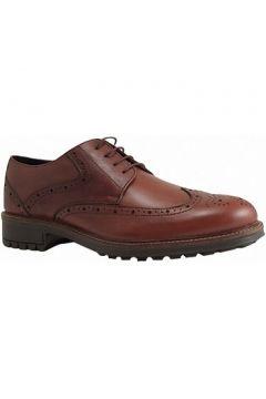 Chaussures Longo 29518(115426191)