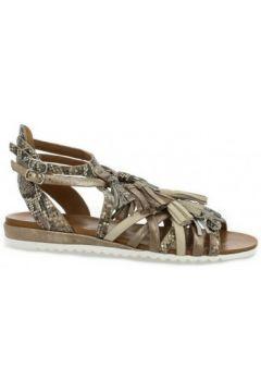Sandales Femme Plus Nu pieds cuir python(98529657)