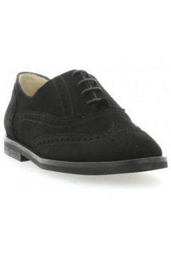 Chaussures Vidi Studio Derby cuir velours(115611244)