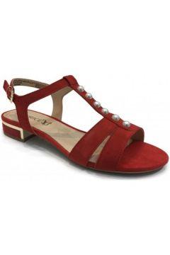 Sandales Caprice Sandale petit talon Rouge(101571351)