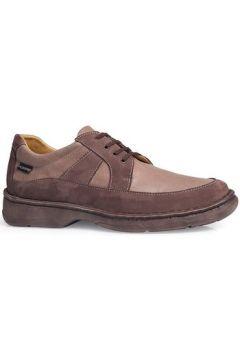 Chaussures Calzamedi Chaussures Shark M 2151(88548405)