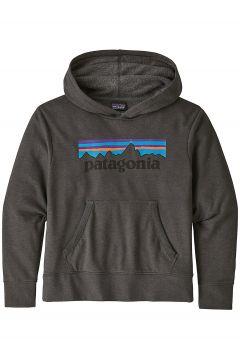 Patagonia LW Graphic Hoodie grijs(96712226)