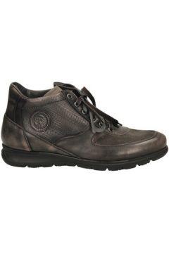 Boots Lion -(101647301)