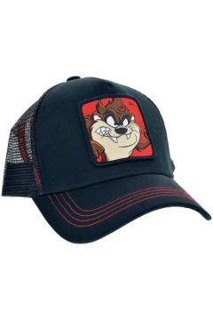 Casquette Collabs Taz 1(115527582)