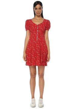 Polo Ralph Lauren Kadın ELBİSE Kırmızı 6 US(120941608)