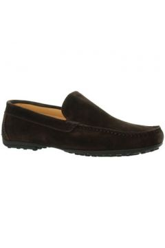 Chaussures Baxton Mocassins ref_bom46204 Marron(98511941)