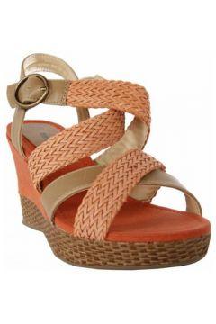 Sandales Odgi-Trends 733510-B7200(127858318)