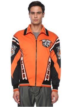Dolce&Gabbana Erkek Turuncu Polo Yaka Şerit Logolu Bomber Mont 46 IT(121734238)