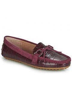Chaussures Lauren Ralph Lauren BRILEY(115438806)