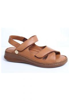 Messimod 3562 Kadın Günlük Anatomik Sandalet(117470084)