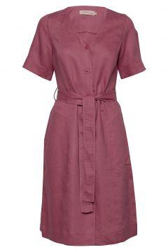 Dress Short Sleeve Kleid Knielang Pink NOA NOA(114164380)