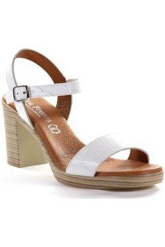 Chaussures escarpins Eva Frutos 990(127970430)