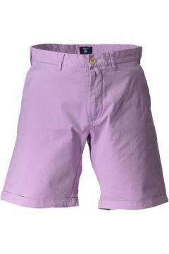 Short Gant 1601.021435(115588883)