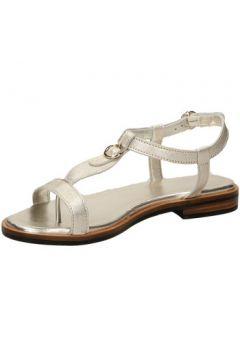 Sandales Frau SAFRON(101559630)