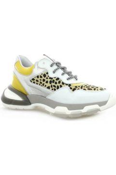 Chaussures Roobin\'s Baskets cuir(127980128)