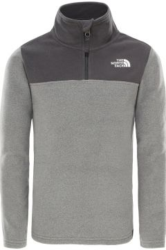 THE NORTH FACE Glacier Blocked 1/4 Zip Fleece Pullover grijs(109159742)