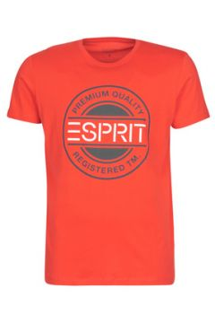 T-shirt Esprit ICON T-SHIRT(115494071)