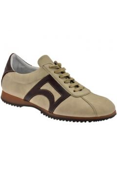 Chaussures Bocci 1926 CampusfaibleSneakers(98743864)
