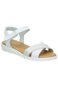 Chaussures enfant Tarke 1203(115524270)