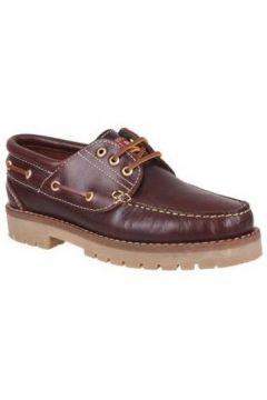 Chaussures Molina Chaussure bateau 20400 chevalier brun(115438766)