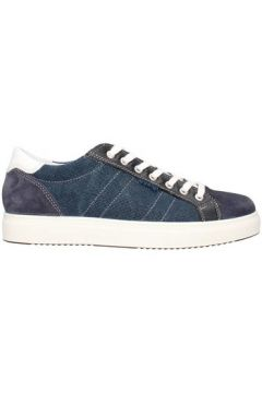 Chaussures Igi co 3132811(115595020)