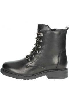 Boots Arlee Mod L288(115568800)