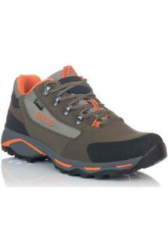 Chaussures Chiruca SANTIAGO 08(101634903)