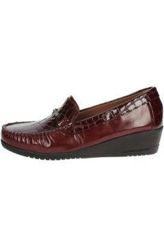 Chaussures Sintonia CS2007-4(98728001)
