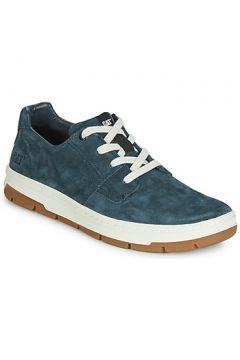 Chaussures Caterpillar RIALTO(115499074)