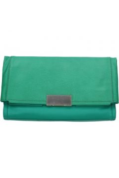 Pochette CK Collection pochette vert cuir AB981(115545450)