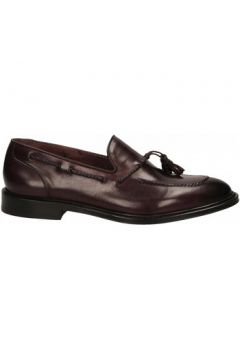 Chaussures Brecos VITELLO(115565170)