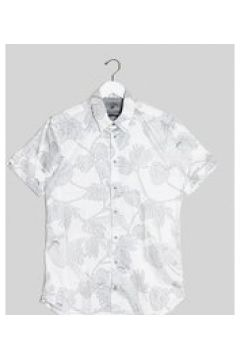 Ted Baker Tall - Camicia a maniche corte con stampa di pappagalli e foglie bianca-Bianco(120260133)