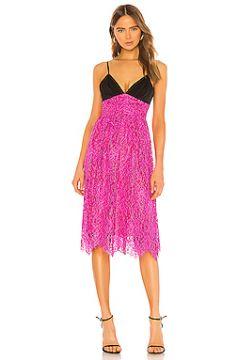 Платье миди merlot - NBD(115061761)