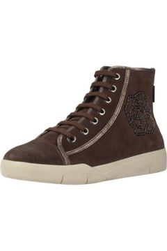 Chaussures Stonefly SIDNEY 1 BIS(115534772)
