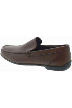 Chaussures Igi co 5695100(115594274)