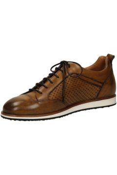 Chaussures Edward\'s DARK(127923367)