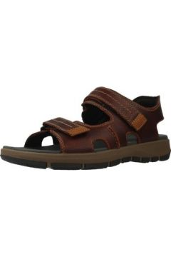 Sandales Clarks BRIXBY SHORE(115536607)