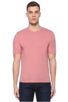 Lardini Erkek Pembe Basic T-shirt 50 IT(107373315)
