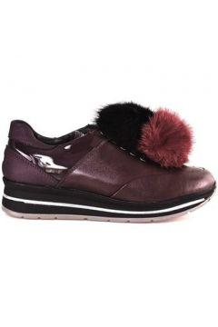 Chaussures Grunland SC3944(115653917)