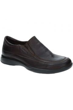 Chaussures Stonefly 86401(115478633)