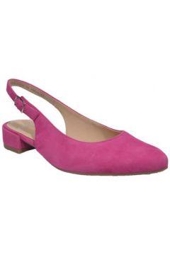 Chaussures escarpins Ara 12-33068(115507365)