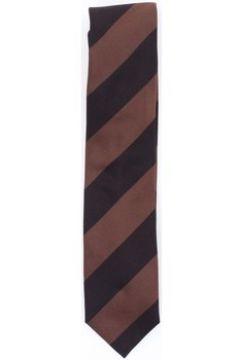 Cravates et accessoires Doppiaa AMANDOLAH2506(115572940)