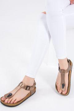 Sandale Fox Shoes Bronze(125455223)